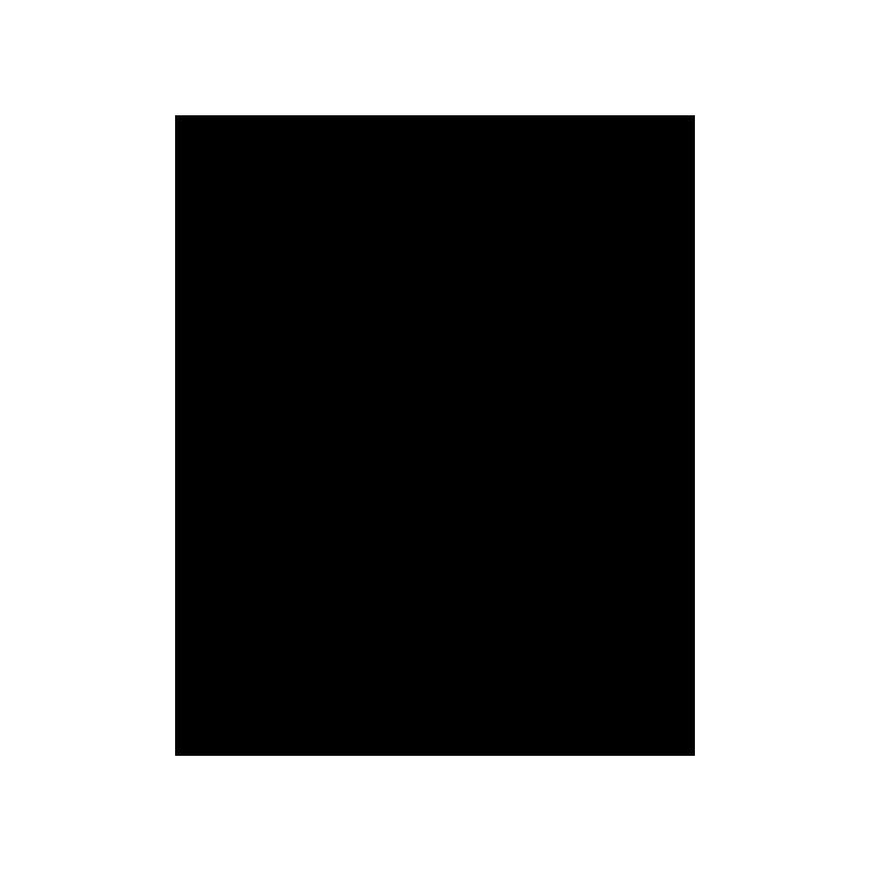 Royal Enfield Logo Black